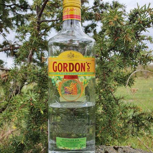 Gordon's Gin Crisp Cucumber (37,5%)